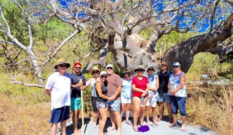 The Mighty Boab Tree On Your Kimberley Cruise
