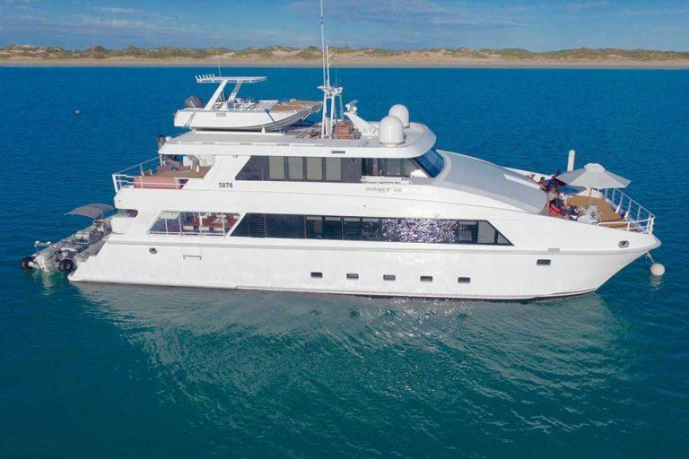 ocean dream charter boat vessel charter